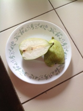 pear-1b