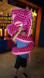 dorney-1-snake