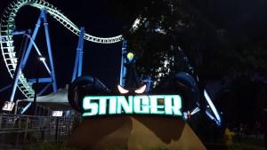 dorney-4-stinger