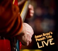 Sean Bray's Peach Trio Live