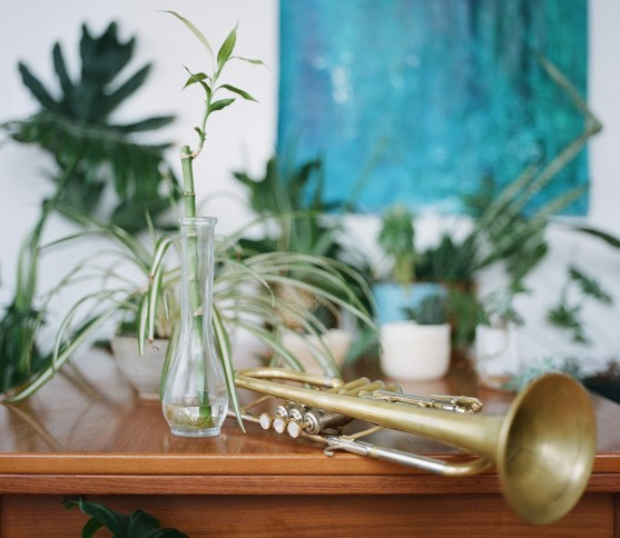 Andrew McAnsh's Trumpet