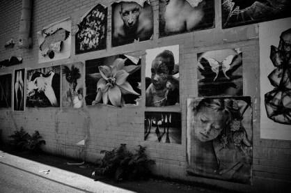 product_wheatpaste_streetart_h-3