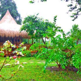 CED Villas - www.thejerny.com
