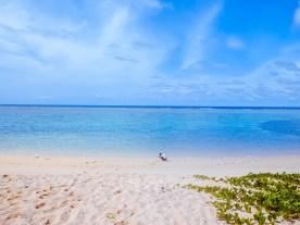 Parola Island: Pink Beach of Camarines Norte - http://thejerny.com