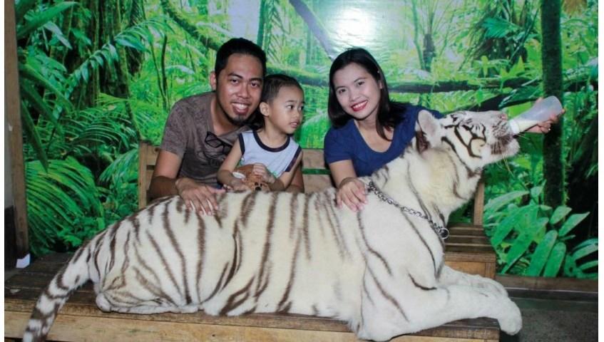 Zoobic Safari - http://thejerny.com