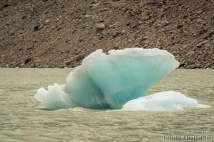 Laguna Torre Ice