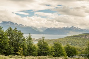 View of Beagle Channel from up on a hill