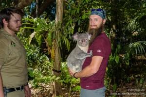Holding a Koala, Lone Pine Koala Sanctuary