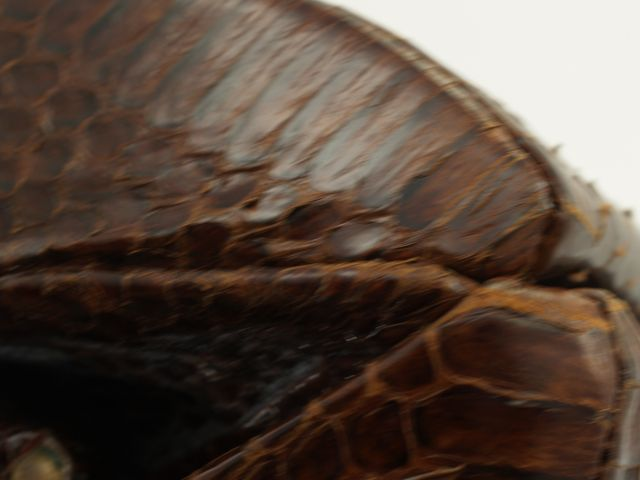 1950s Lizard Skin Purse Close-Up