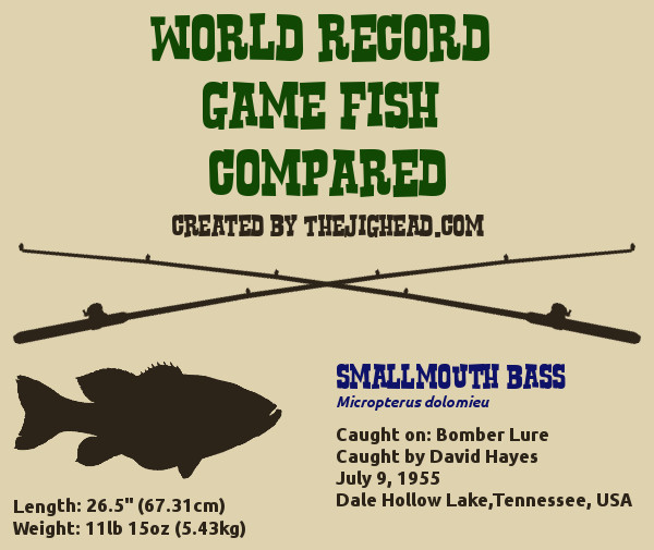 smallmouth bass world record fish fishing