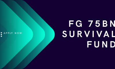How To Apply For FG 75BN Survival Fund (step by step)