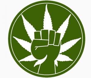 Marijuana.com