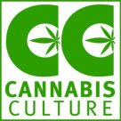 CannabisCultureSquareLogo.preview
