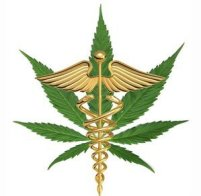 1edit_medical_marijuana1