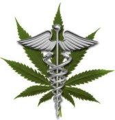medical-marijuana-symbol