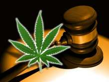 cannabisgavel