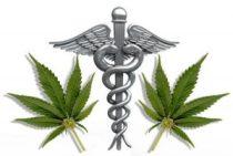 Medical_Symbol-leaves