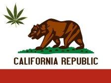 California Marijuana Possession Laws