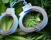 cannabisarrest