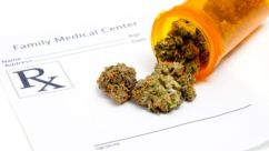 U.S. Senate Committee Votes to Protect Medical Marijuana States