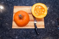 pumpkin pie_008