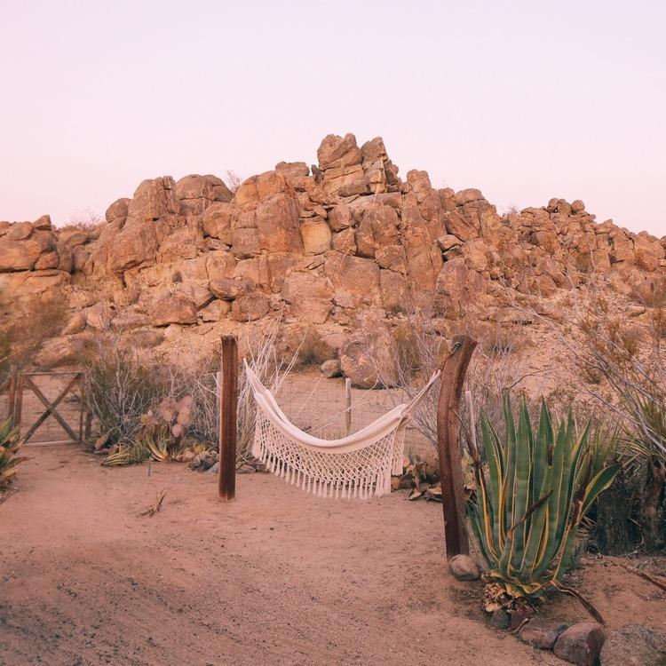 hammock at the casita