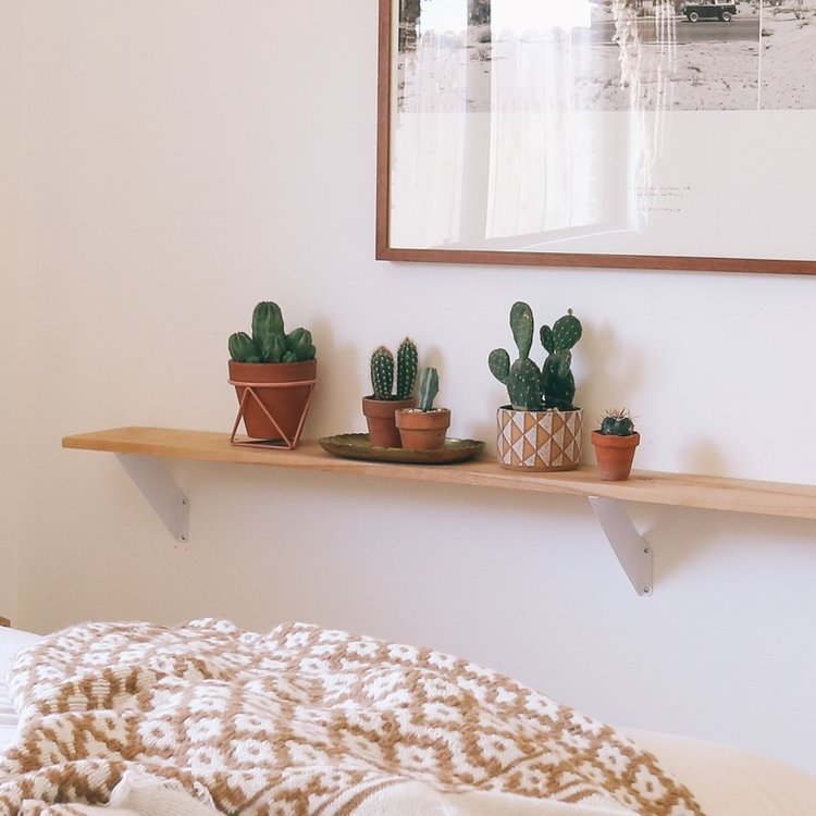 Casita shelf