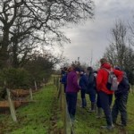 A trial using nature to help reduce flood risk hailed a success