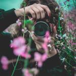 UK Mission Geneva: Environmental Photography Competition