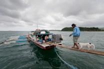 SUPPLY LINE. A man and his dog cross a makeshift bridge to a boat that is being used in Santa Ana, Cagayan, to transport supplies and other goods to Maconacon, Isabela, but which has been kept from sailing for a week by bad weather.