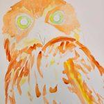 3-Owl-with-Attitude