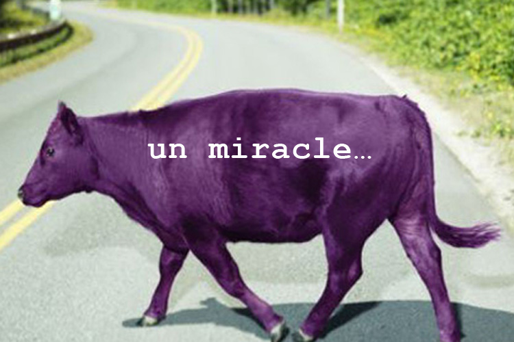 Un miracle…