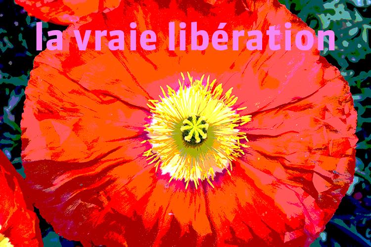 Image de soi, la vraie libération