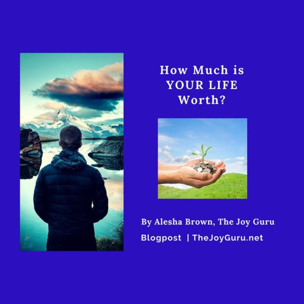 How much is your life worth-11-27-17