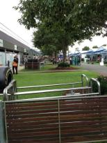 ...nice paddock, grass outside back of the garages