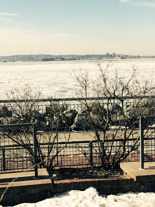 Still Winter in NYC