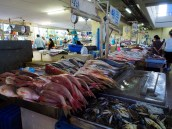 Panama City's seafood market had more options than we knew what to do with.