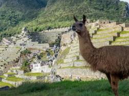 PERU-150530-10487