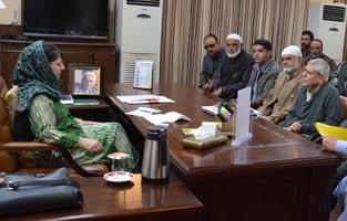 Deputations from Hajin, Ajas meet Chief Minister