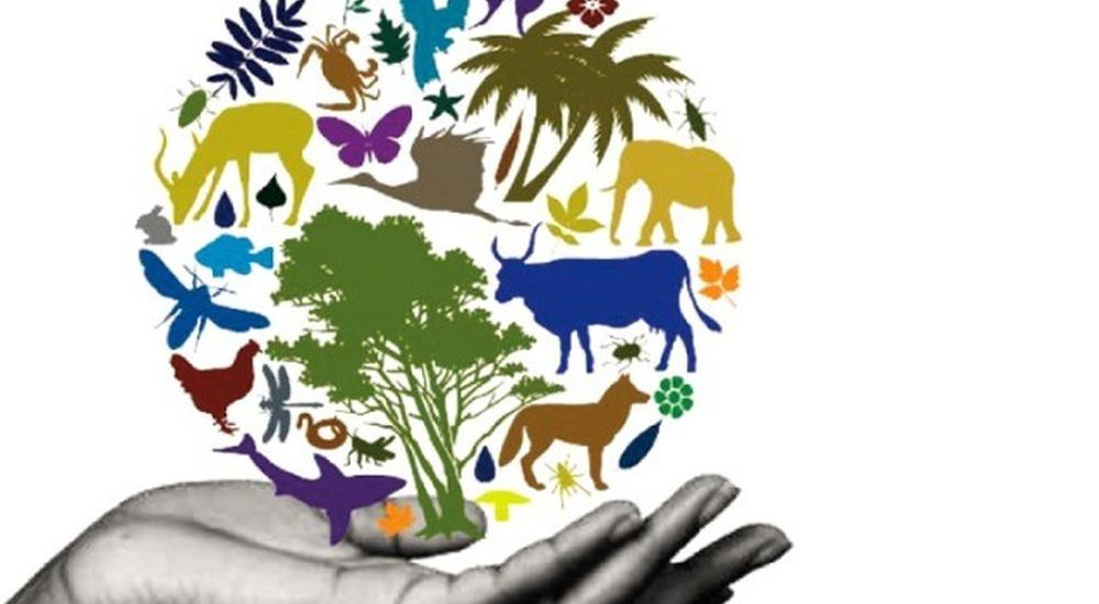 NEED, IMPORTANCE OF BIODIVERSITY CONSERVATION