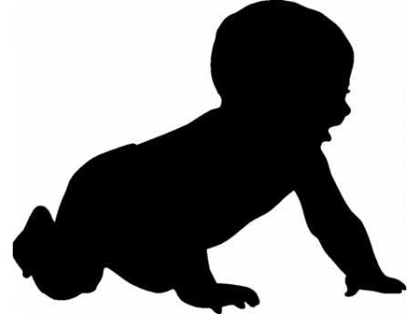 Govt formulates comprehensive action plan to reduce Infant Mortality Rate in JK