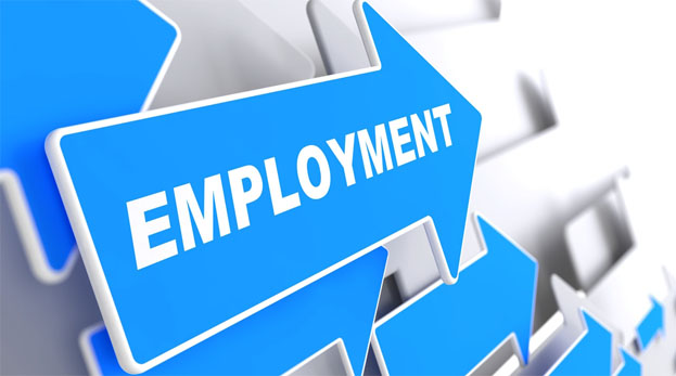 Tackling dearth of employment avenues in J&K