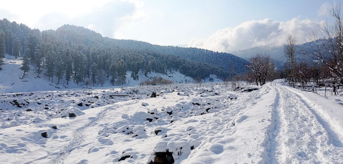 This is how the whole stretch of Nalla Ferozpora in Tangmarg…