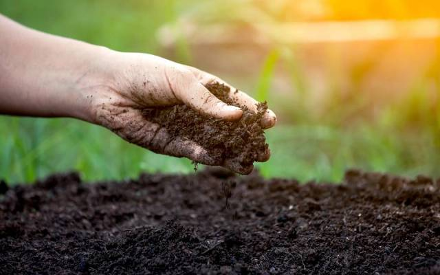 Organic farming in Jammu and Kashmir: Progress, challenges and prospects