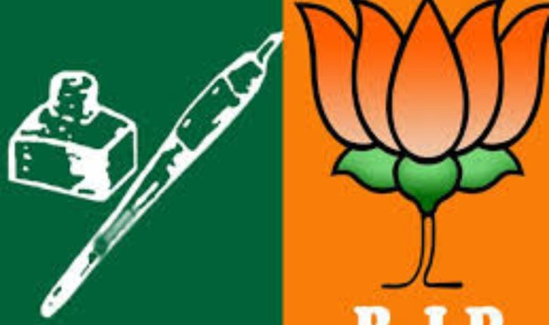 Polls meant for providing Bijli, Sadak, Paani, not for political solution of Kashmir issue: BJP