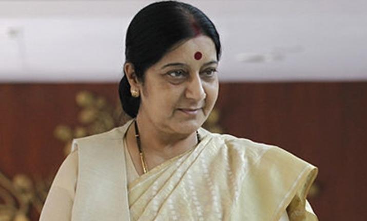 No Pakistan soldier or civilian died in Balakot air strike: Sushma Swaraj