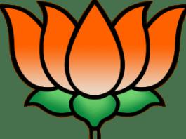 bjp, india, kashmir, srinagar