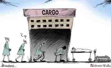 Kashmir, Kashmir cartoon, cartoon from Kashmir