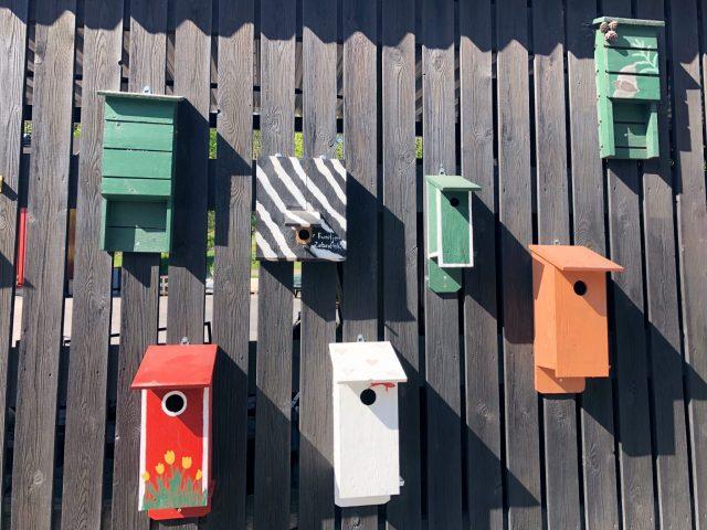 The Kat Edit: tourist in your own town langholmen bird boxes