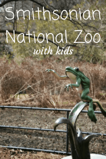 Visiting the National Zoo with Kids A few Tips for a fun Day! thekeeledeal.com